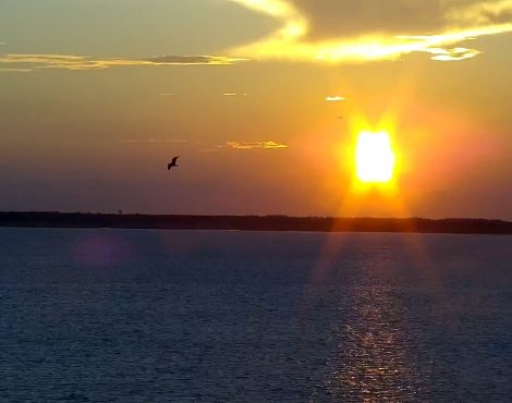Ocean City MD Sunset Cam 2